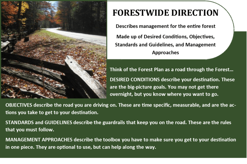 Forestwide Direction