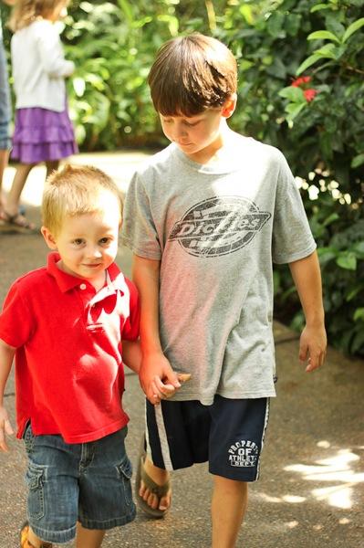 20110817 Butterfly Pavilion 19