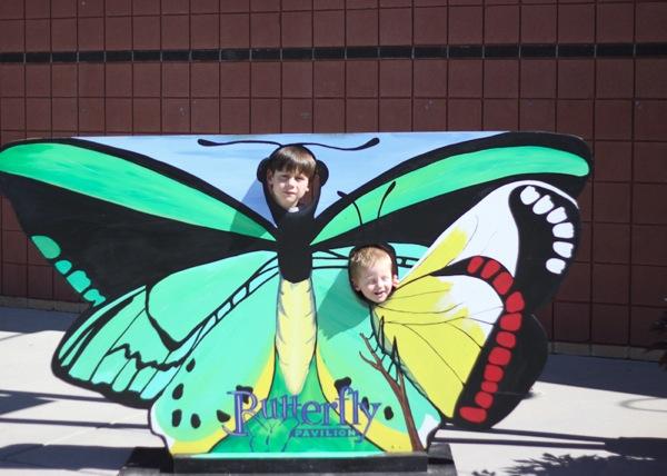 20110817 Butterfly Pavilion 5