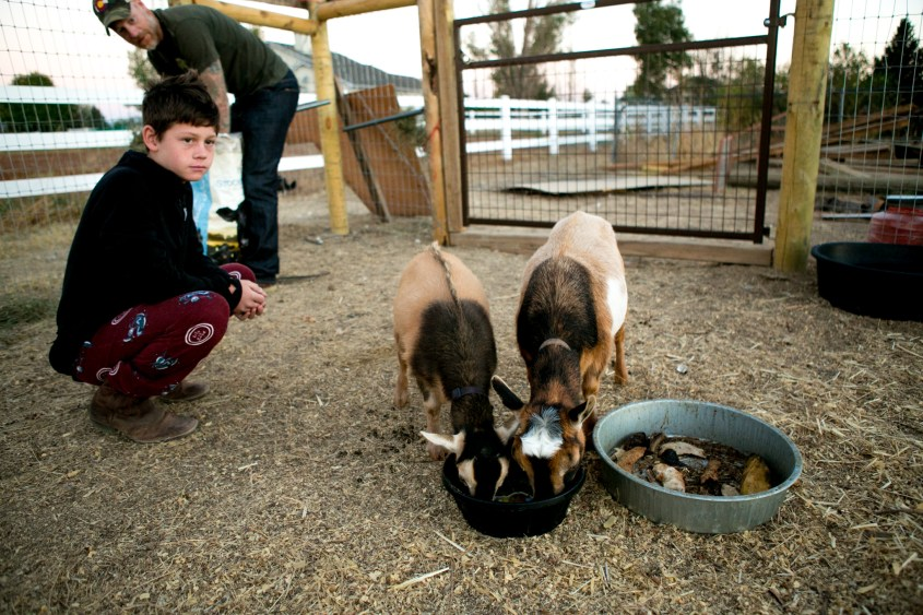 0926 goats-011