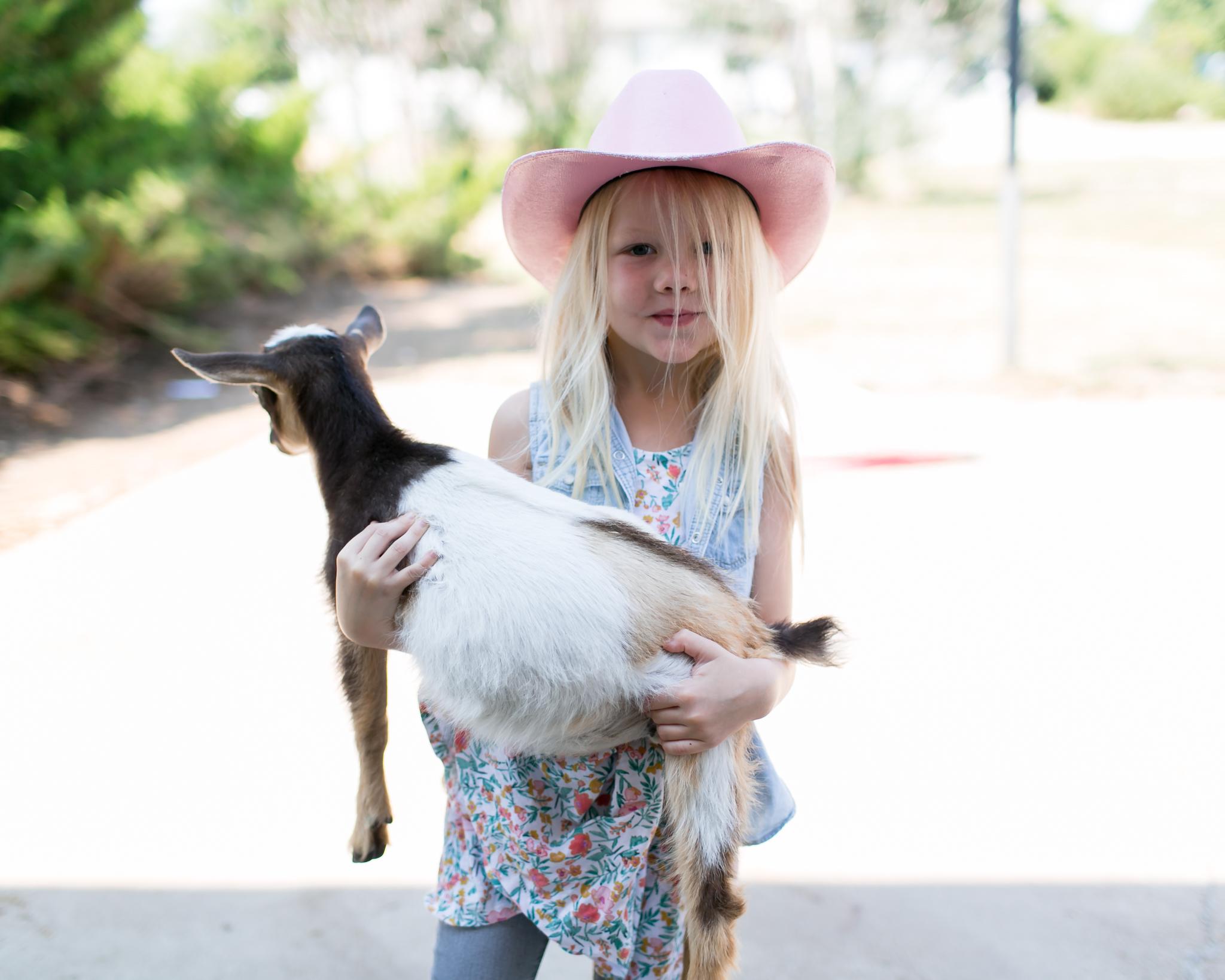 0730 goats-006