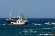 Procesión Marítima en honor de la Patrona de Cedeira - Cedeira, 16 de agosto de 2012 - fotografía por Fermín Goiriz Díaz (239)