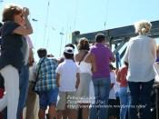 Procesión Marítima en honor de la Patrona de Cedeira - Cedeira, 16 de agosto de 2012 - fotografía por Fermín Goiriz Díaz (407)