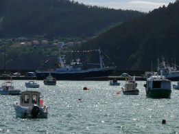 Procesión Marítima en honor de la Patrona de Cedeira - Cedeira, 16 de agosto de 2012 - fotografía por Fermín Goiriz Díaz (505)