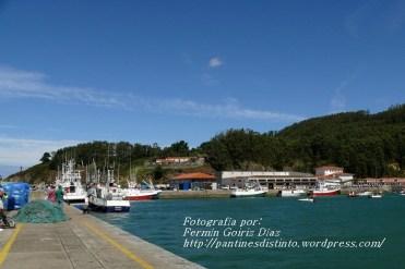 Procesión Marítima en honor de la Patrona de Cedeira - Cedeira, 16 de agosto de 2012 - fotografía por Fermín Goiriz Díaz (92)