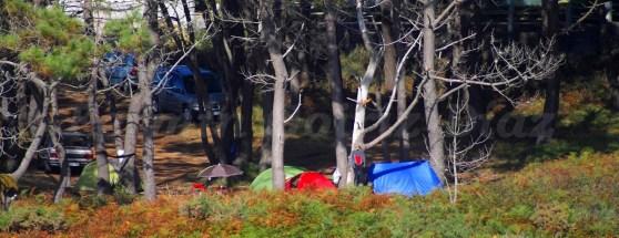 Cabreiroá Pantinclassic 2012 - Pantín (Valdoviño)-Galicia- foto por Fermín Goiriz Díaz (185)