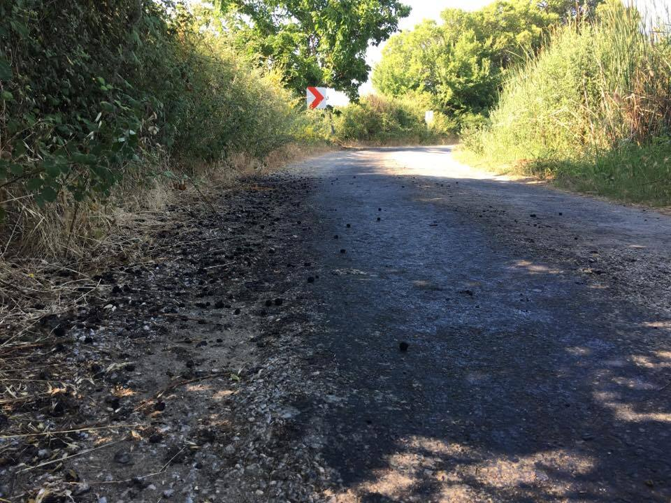 The blackened bitumen from the ton of squashed mulberries