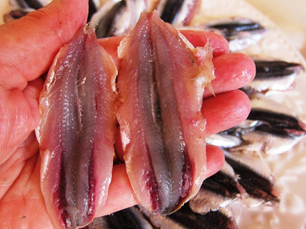 how to prepare anchovies