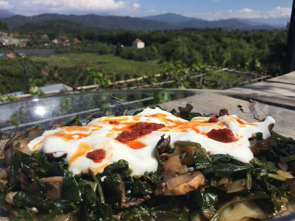 Mushroom and Spinach with Yogurt