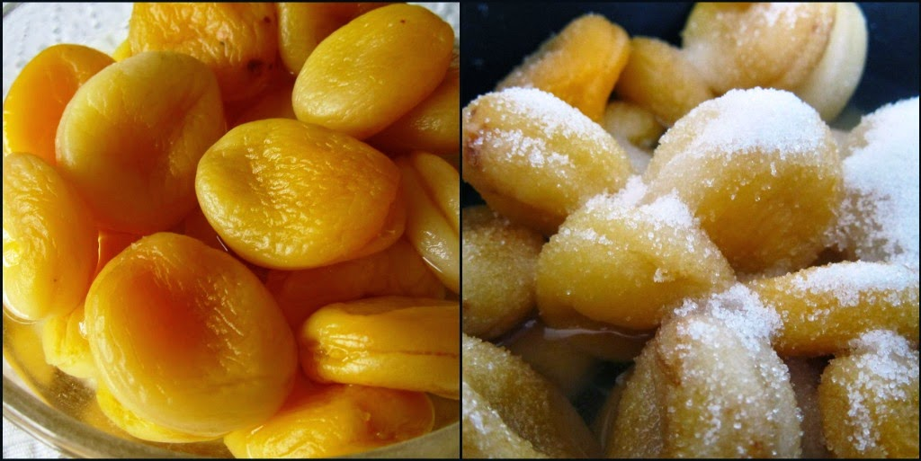 Apricots in water, sugar and lemon juice
