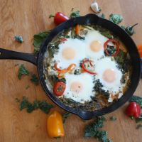 The Green Shakshuka Experiment
