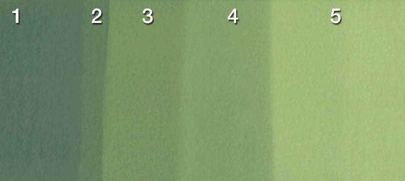 Gradacion_numbers