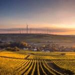 wideangle lens panoramica farm