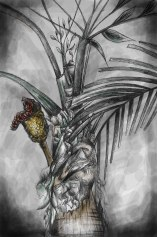 Taller de Ilustración Botánica 2017