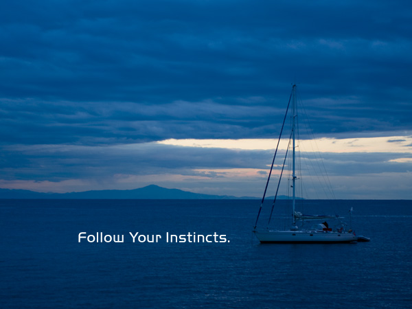 Follow Your Instincts