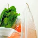 野菜の入ったレジ袋