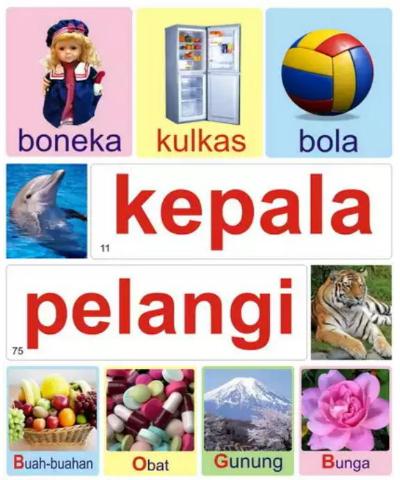 flashcard indonesia