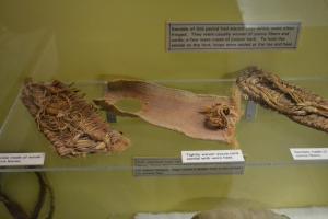 chapin-mesa-archeological-4
