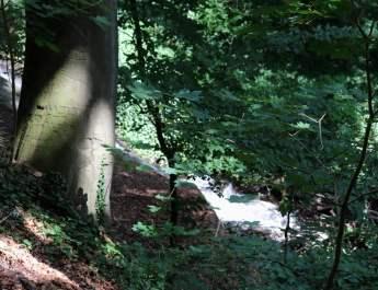 Das Königsfließ stürzt bei Kümmernitz etwa sechs Meter in die Tiefe