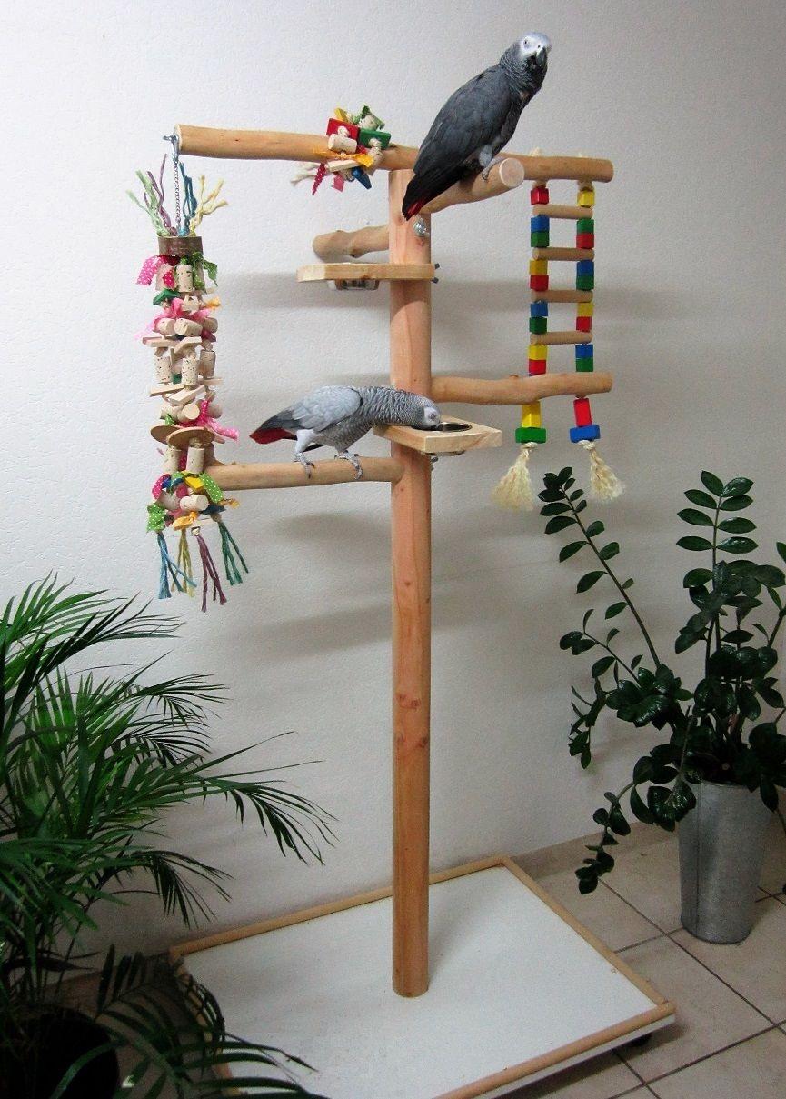 papageienfreisitz selber bauen so wird s gemacht. Black Bedroom Furniture Sets. Home Design Ideas