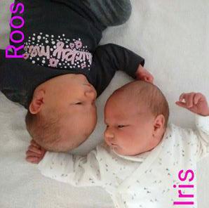 De tweeling is geboren