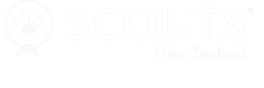 Paparangi Scouts Group