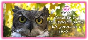 Come to my $5 jewelry party - its a hoot!