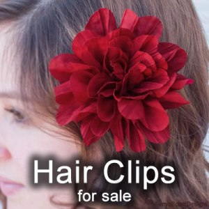 Paparazzi hair clips facebook album cover image