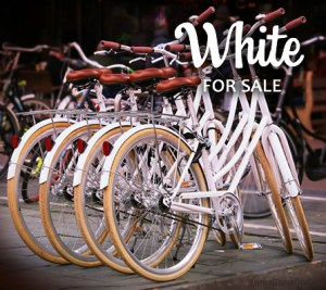 white Paparazzi facebook album cover image