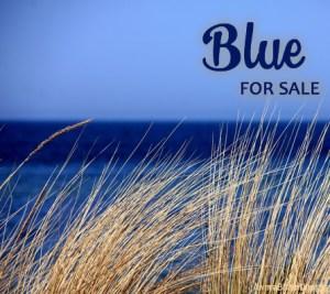 Blue Paparazzi Jewelry items for sale