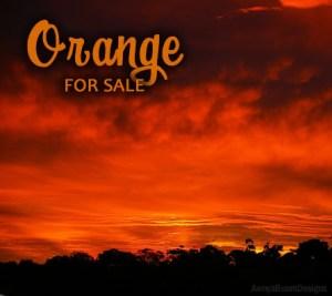 Orange Paparazzi Jewelry items for sale Album cover photo