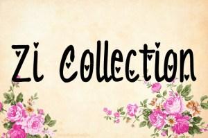 Zi Collection Paparazzi jewelry album cover photo