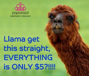 llama get this straight - Everything is $5 jewelry