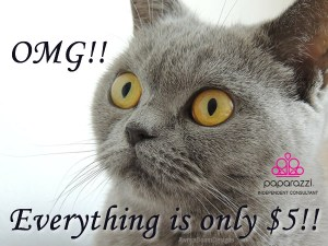 OMG - Everything is only $5