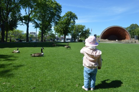 Boston en famille : Charles River Park