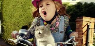 女の子と猫の口パクビデオが超可愛い!80年代STARSHIPの名曲が復活!