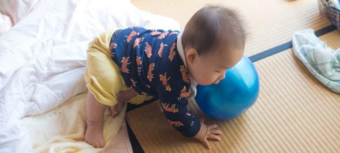畳の上でころがる鼓太郎。