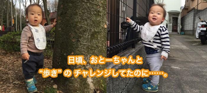 生後11ヶ月、ついに初めて歩きましたよ!……と保育園の先生よりご報告。