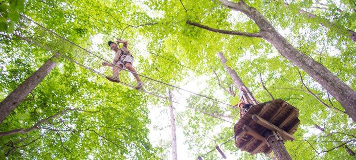 北軽井沢のスウィートグラスアドベンチャーは、まるで森の空中散歩。無料エリアと小1(身長110cm)からチャレンジできる有料エリア