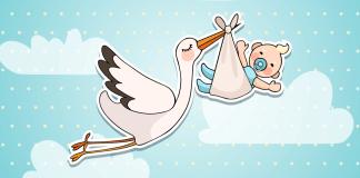 赤ちゃんを運ぶコウノトリ
