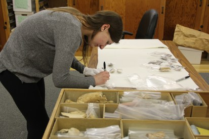 A student working to rehouse the artifacts