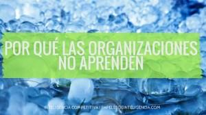 por qué las organizaciones no aprenden
