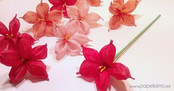 Como Hacer Una Flor Con Papel Free Como Hacer Una Flor Con Papel