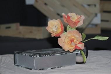 Rosas naranjas (12)