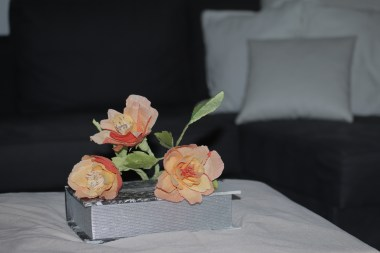 Rosas naranjas (7)