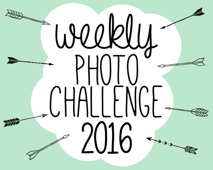 Weekly Photo Challenge for 2016 by Paper and Landscapes