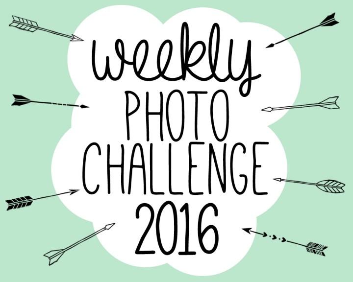 P&L's Weekly Photo Challenge 2016