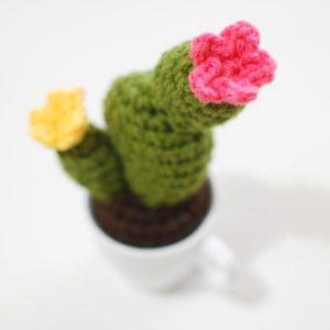 12 Finished - Crochet Cactus Free Pattern - Paper and Landscapes