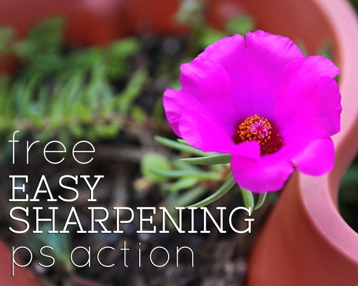 FREE Easy Sharpening Photoshop Action