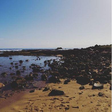 Landscape - coralie.ann